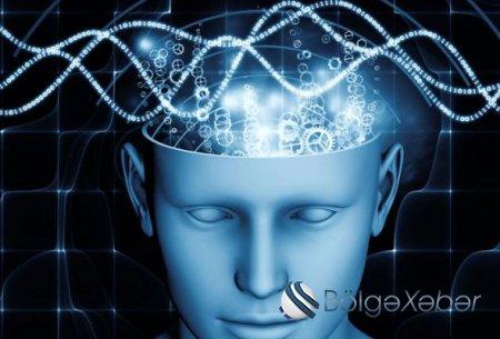 Beyni gücləndirən ən təsirli qidalar