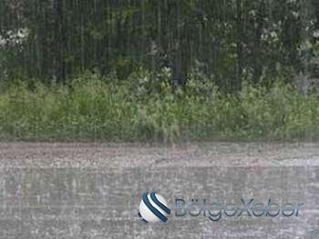 Leysan yağışlar Zaqatalada fəsadlar törətdi